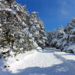 Peñalara: Madrid's Winter Wonderland