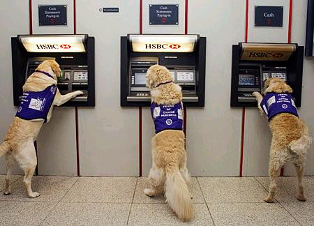 Spanish bank tips