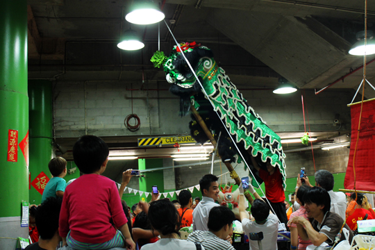 Apparently, dragons climbing ladders to eat cabbage is a Chinese New Year tradition, this time played out in Paddy's produce market.