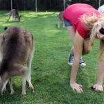 7 Reasons to Love Life in Australia