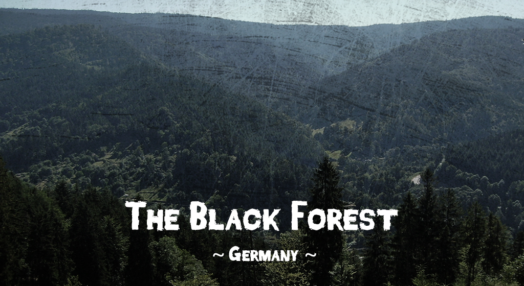 Haunted forests - The Black Forest, Baden-Württemberg, Germany