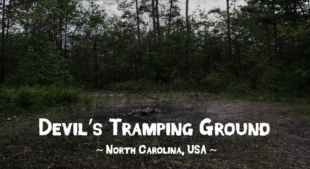 Haunted forests - Devil's Tramping Ground, North Carolina