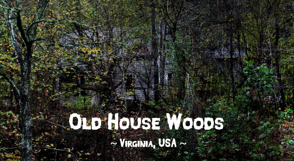 Haunted forests: Old House Woods, Mathews County, Virginia