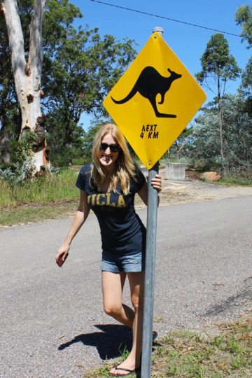 On a kangaroo quest