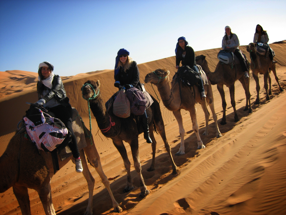 No room for knick-knacks on this camel!