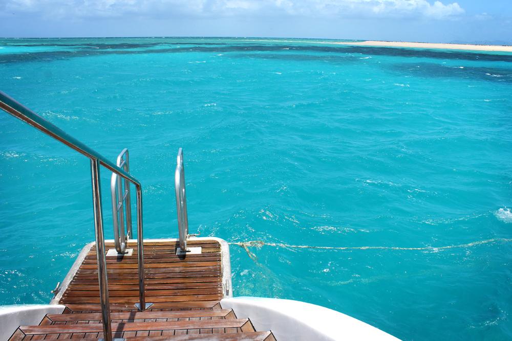 Michaelmas Cay, Great Barrier Reef, Australia