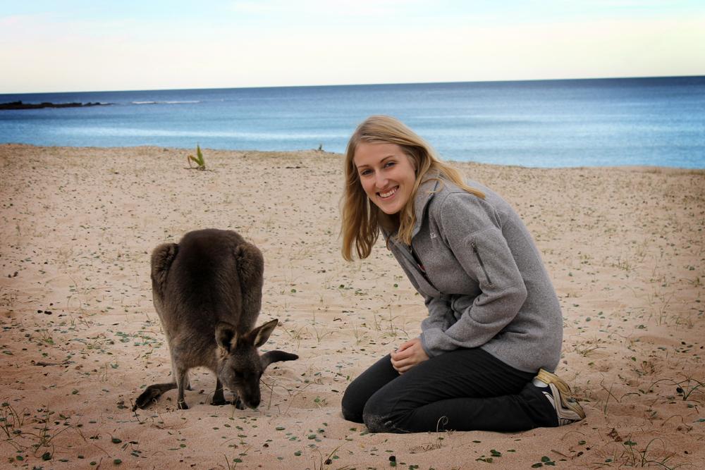 Pebby Bleach kangaroo, Australia