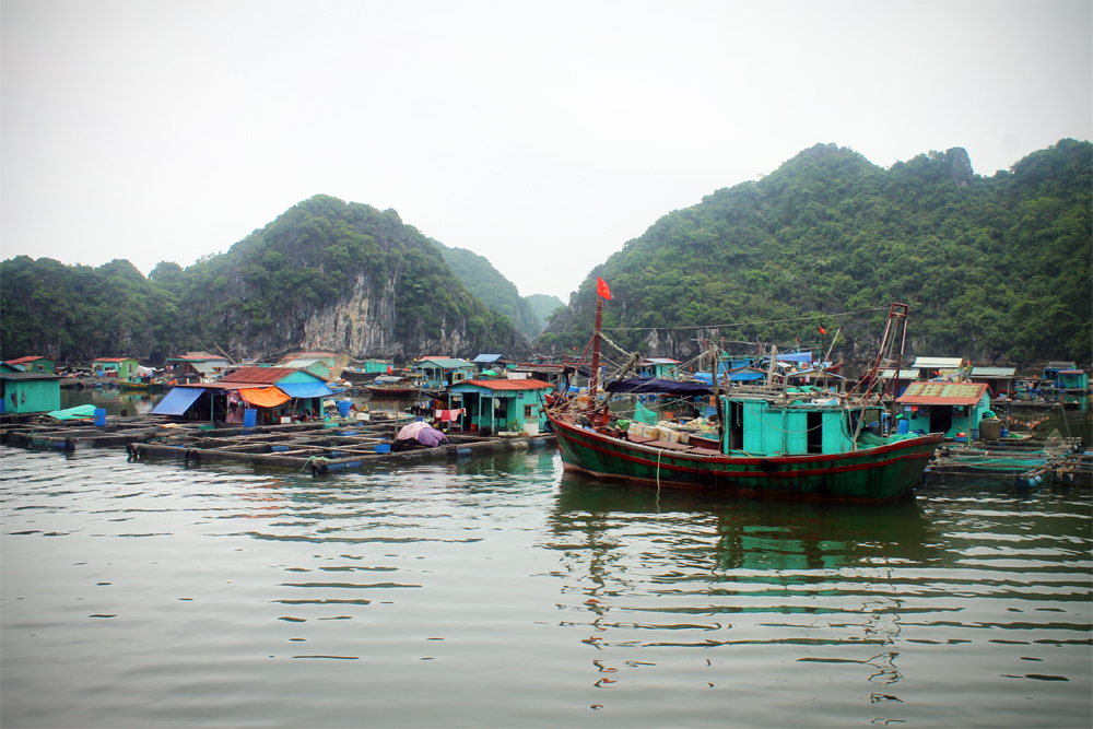 Fishing village, Halong Bay, Vietnam