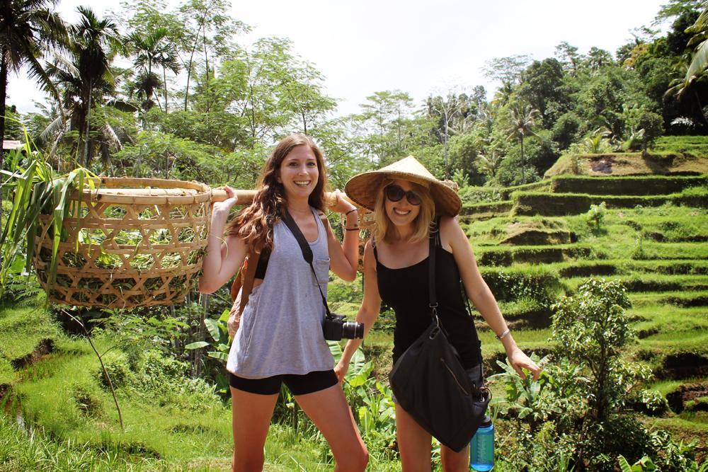 Ubud, Bali rice paddies