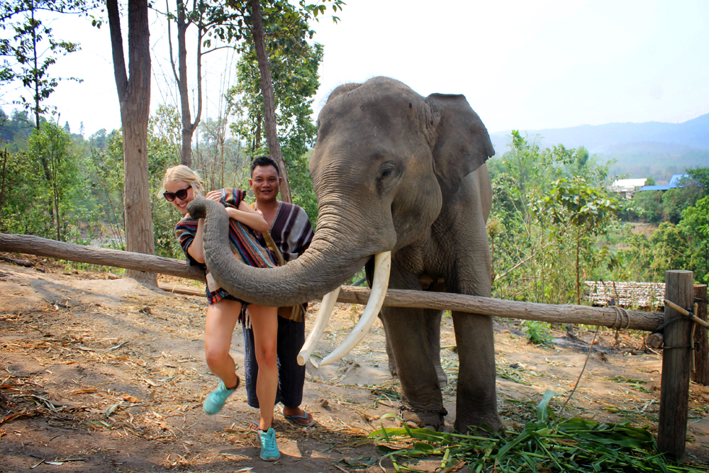 Elephant Jungle Sanctuary, Chiang Mai, Thailand