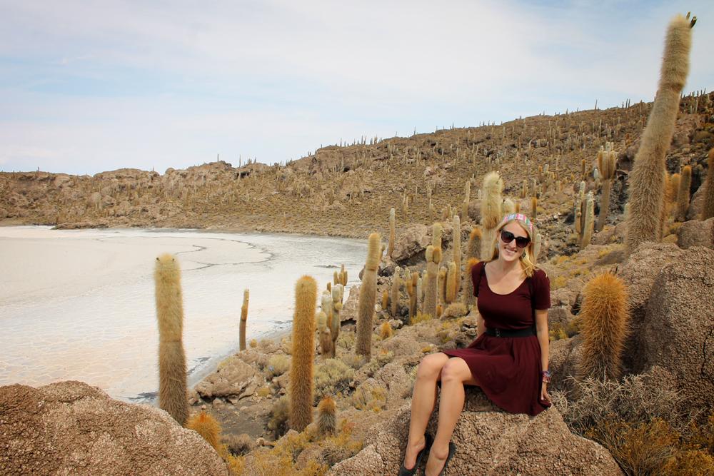 Cactus island, salt flats, Uyuni, Bolivia
