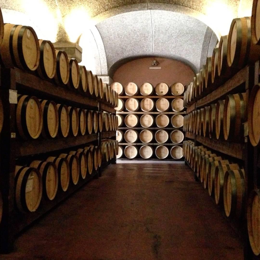 Wine tasting, Sardinia, Italy