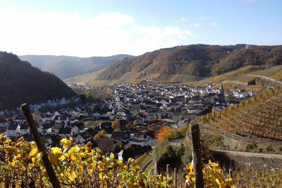 Ahr Valley, Germany wine tasting