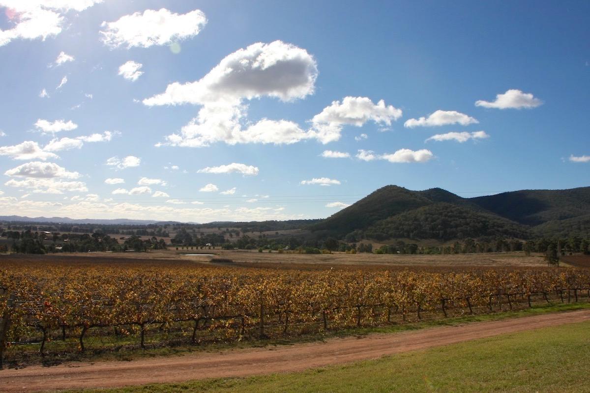 Mudgee, Australia wine tasting