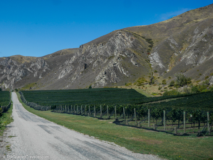 Chard Farm, Gibbston Valley, New Zealand