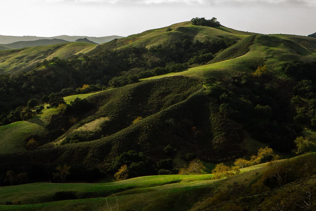 San Luis Obispo, California wine tasting