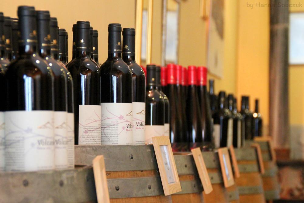 Golan Heights Winery, Israel wine tasting