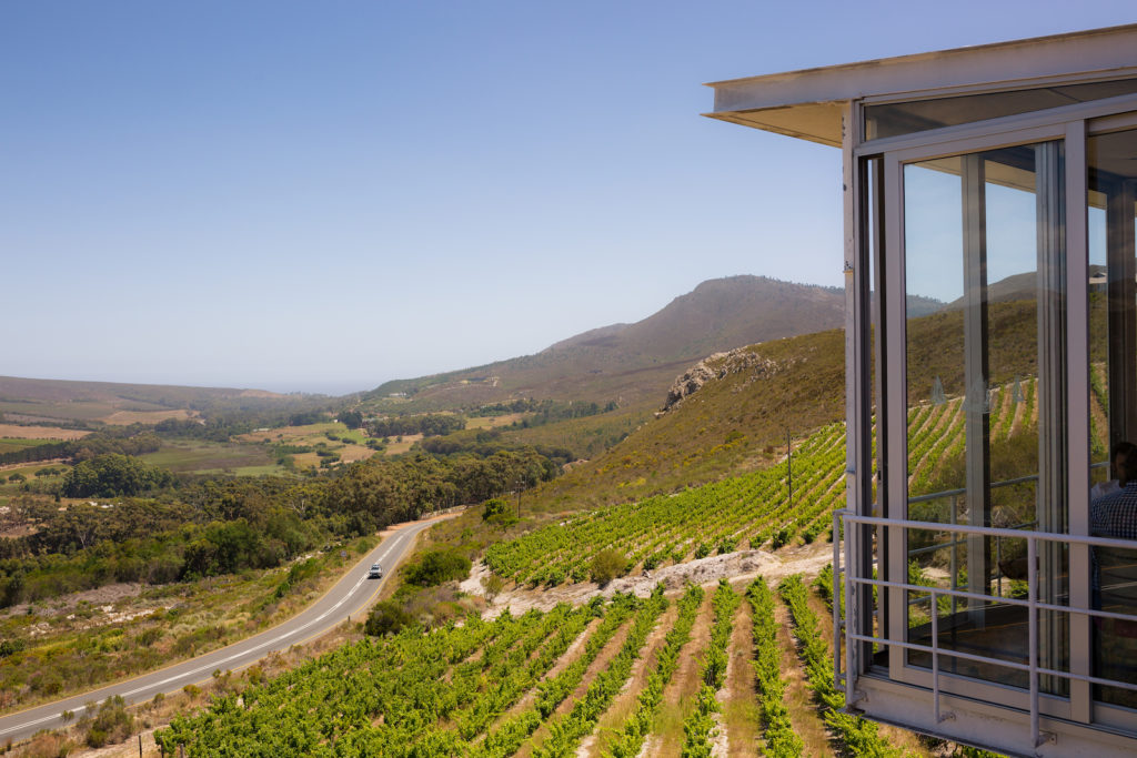 Newton Johnson Winery, Hemel en Aarde Valley, South Africa wine tasting
