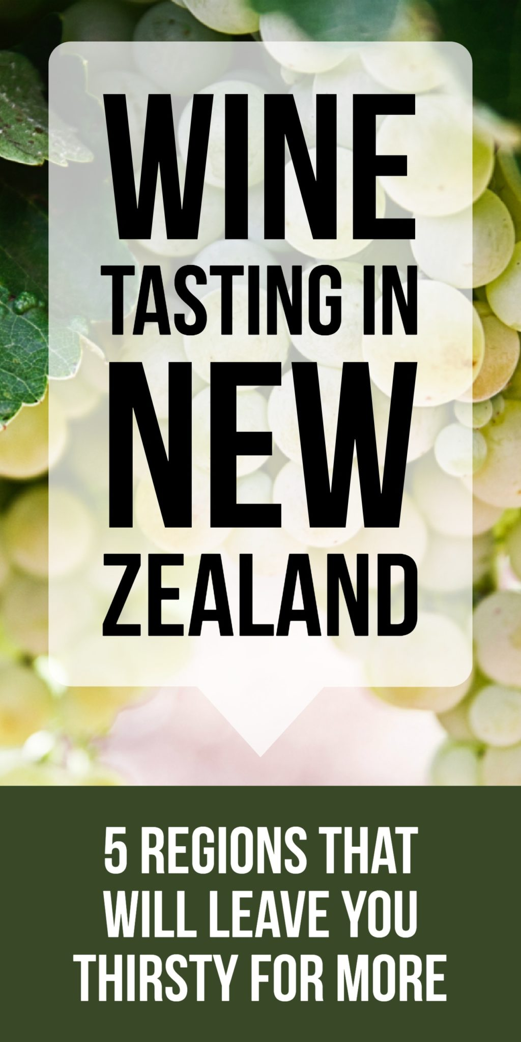 As one of the world's top twenty wine producers, New Zealand has no shortage of amazing wine regions, vineyards, and wineries to explore. Discover some of the best wine tasting spots across NZ's North and South Islands.