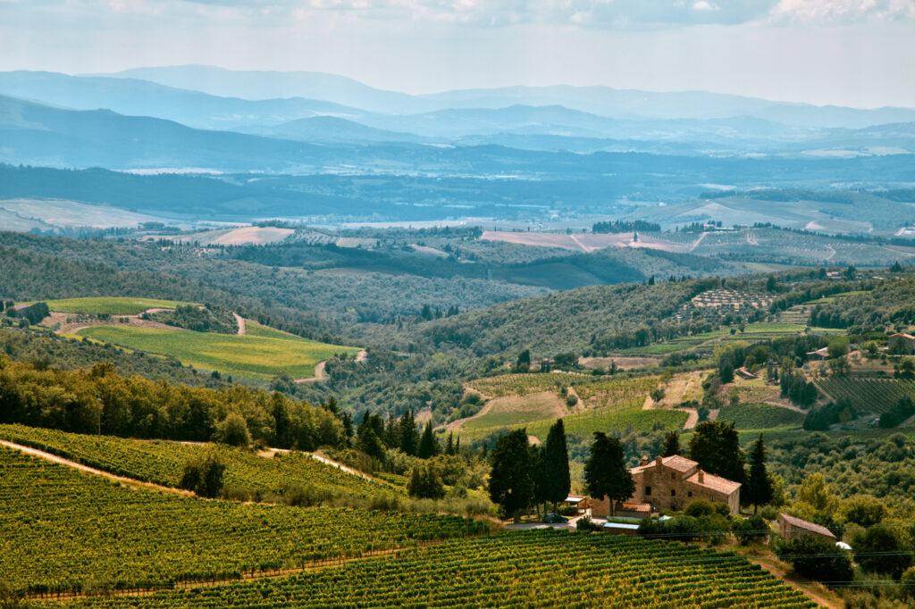 Wine tasting, Italy