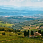 Cin Cin! A Tasty Guide to the Best Italian Wine Regions