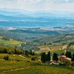 Cin Cin! A Tasty Guide to the Best Italian Wine Regions
