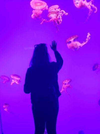 Toronto, Canada aquarium
