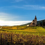 Best Wine Regions in Europe: 10 Destinations and Wineries You Can't Miss