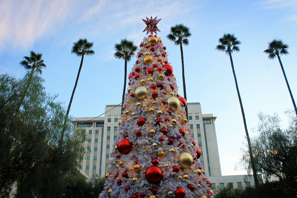 Los Angeles Christmas tree