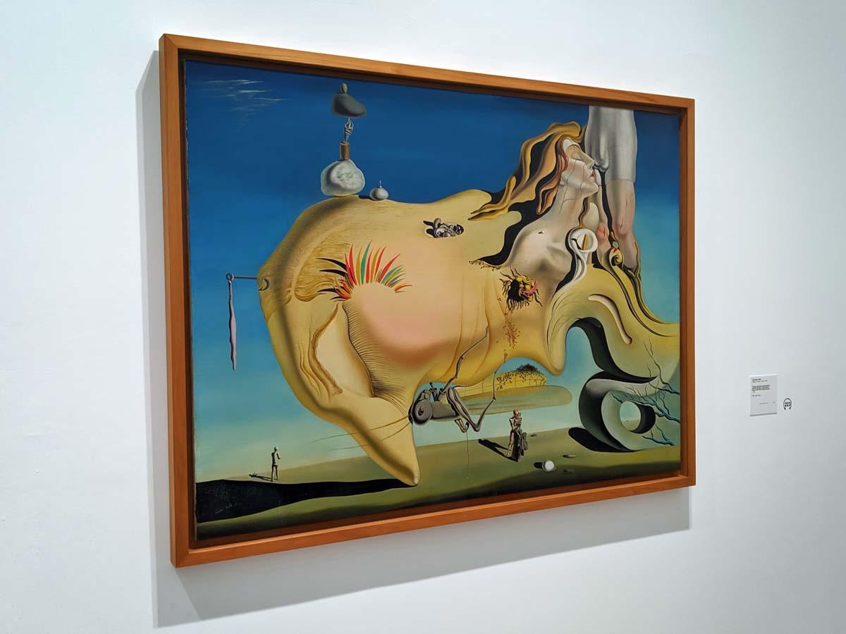 Dalí, Reina Sofia museum